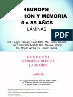 Neuropsi Atencion y Memoria - Láminas