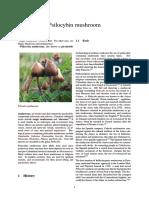 Psilocybin Mushroom