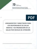Lineamientos y Directrices Para Los Responsables de Salud Mental y Promocion de La Salud Por Niveles de Atención 1