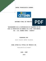 Informe Practicas Pre Profesionales Nkchv