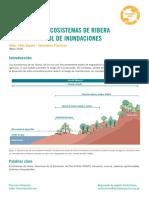 El rol de los ecosistemas de ribera para el control de inundaciones – Soluciones Practicas 2018.pdf