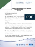 Informe Técnico Depuradora AySA LANUS 04.2018