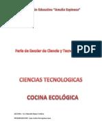 feria de ciencias 2018 cocina ecologica.docx