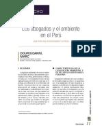 Los Abogados y El Ambiente en El Perú MDourojeanni 2019