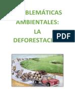 PROBLEMÁTICAS deforestacion