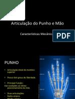 Cinesiologia - Punho e Mão 1