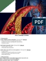 Anestezia in Stomatologie