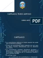Informe de Canvas - Saga Falabella (1) Mejorado