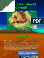 Regiuni din  Muntii Carpati.ppt