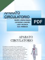 Aparato Circulatorio 2 (1)