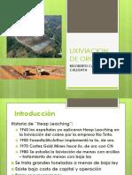 233400315-Lixiviacion-de-Oro.pdf