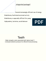 Lecture 3 Teeth