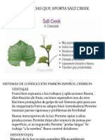 Crimsom Seedles - Pisco -Ica Corregido-2