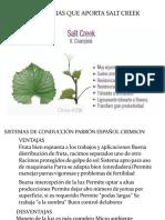 Crimsom Seedles - Pisco -Ica Corregido-2