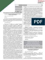 RESOLUCION N° 0033-2019-APNDIR