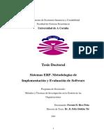 RicoPena_Fermin_TD_2004.pdf