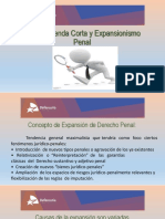 Agenda Corta y Expancionismo