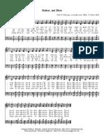 senormidios.pdf