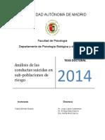 suicidio nuvea tesis internacional.pdf