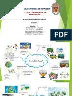 Ecologia en La Tecnologia
