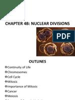 MF009 4B Nuclear Division James L2