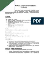 Pautas Para La Elaboración Del Informe Sys