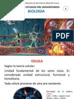 BIOLOGIA 5.CELULA.pdf