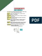 Upper&Lower Limb Nerve Injuries (2)