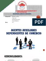 Agentes Auxiliares Dependientes de Comerc.docx