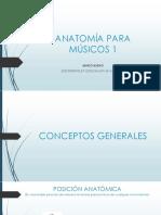 Anatom a Para m Sicos 1