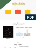 Capillary in Nano channel (report)