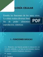 Fisiologia Celular 1