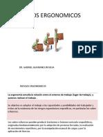 Riesgos Ergonomicos Gabriel Guamancuri 2019