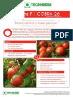 54-cobra-26-f1-cr-fr