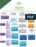 Evidencia 1 Mapa Conceptual El Sistema Finaciero de Colombia