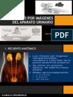 Diagnostico Por Imágenes Del Aparato Urinario (1)