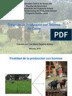Sistemas de Produccion Con Bovinos de Carne