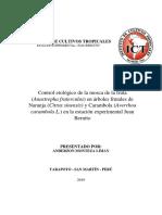 TRABAJO DE INVESTIGACION DE MOSCA DE LA FRUTA - copia - copia.docx