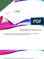 Hidrolase.pptx
