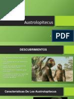 Austrolopitecus diapositivas
