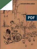 AUTO-SUFICIÊNCIA BÁSICA.PDF.pdf