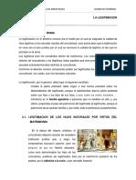 Legitimacion-en-Roma-1.docx