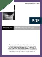 PARASITOLOGIA 17 DE DICIEMBRE.docx