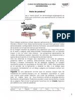 Nube de palabras.pdf