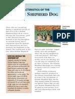 German Shepherd Dog Characteristics