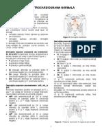 01-ECG Normal FKT Sport