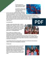 Los Genes, El Matriarcado, Patriarcado, El Clan,La Tribu, La Ciudad, Los Procesadores de Texto Ilustrados, Documentos Comerciales, Histograma de Pearson