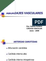 ABORDAJES VASCULARES2