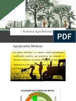 Aula Sistemas Agroflorestais