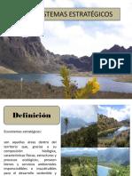Ecosistemas Estratégicos Presentación